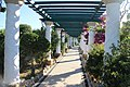 Аллея. Thermes Kallithea. Leoforos Kallitheas. Rhodos. Greece. Июнь 2014 - panoramio.jpg