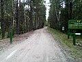 """В'їзд у """"Поліський природний заповідник"""" 03.jpg"""