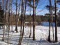 Весна идет - panoramio.jpg
