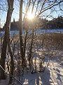 Зимнее озеро.jpg
