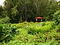 Игуменский парк, г. Томск.JPG