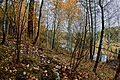 Осенний урал.jpg