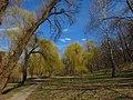 Парк «Нивки» (східна частина) IMG 7548.jpg