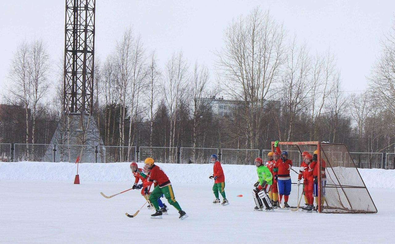 The recreation center Mechka, Novodvinsk, Arkhangelsk region: photo 79