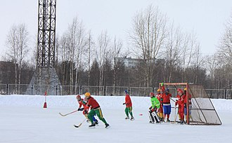Plesetsk - A youth team in the Bandy Championship of Arkhangelsk Oblast
