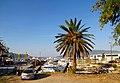 Порт Герцег-Нови - panoramio.jpg