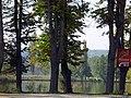 Пригород. Фото Виктора Белоусова. - panoramio (1).jpg