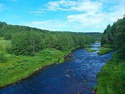 Река Шокша.JPG