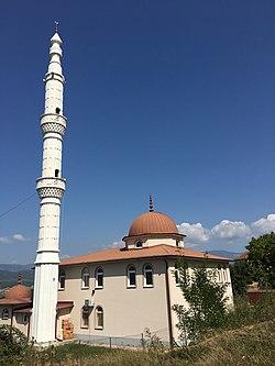Салихинова џамија во Мамудовци.jpg