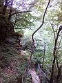 Смоларски водопад 64.jpg
