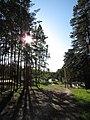 Солнечный уктусский лесопарк.jpg