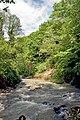 Сочинский национальный парк. Ручей Свирский после сильных дождей.jpg
