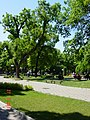 Стара Загора - panoramio (7).jpg