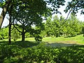 Стрельна, Орловский парк, пруд с островом03.jpg