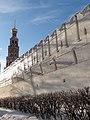 Фрагмент обледенелой стены Новодевичьего монастыря - panoramio.jpg