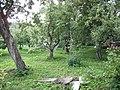 Фруктовый сад с огородами и водоемом между пристанью и каменным арочным мостом 04.JPG