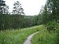 Центральный ботанический сад (23.07.2007) - panoramio - sergfokin (8).jpg
