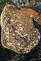 Հուշարձան Քարվաճառում (14).jpg