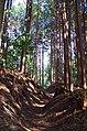 丹治城址への道 2013.3.04 - panoramio.jpg