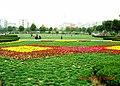 合肥和平公园景色 - panoramio.jpg