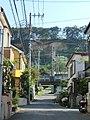 崖に向かう道 - panoramio.jpg