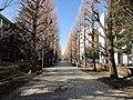 東京大学駒場キャンパス - panoramio (5).jpg