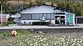 水仙が咲いてるよ - panoramio.jpg