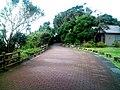 潮岬灯台へ駐車場からの道 - panoramio.jpg