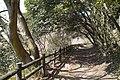 烏原ダム沿道 - panoramio.jpg