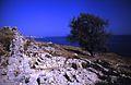 005Zypern Amathus Akropolis (14057940462).jpg