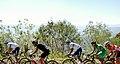 10 Etapa-Vuelta a Colombia 2018-Ciclistas en el Peloton 8.jpg