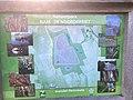 1276.Groningen.Grijpskerk.Nam.GasOpslag.Natuur.Park.NatuurPark.NoorderRiet.Natuurgebied.Kommerzeil.Planten.jpg