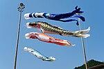 150425 Koinobori Chizu Tottori pref Japan01bs.jpg