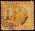 1876ca 2d Western Australia 14 Yv22 SG71.jpg
