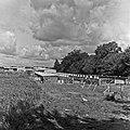 1960 domaine de Laizerie à Vaux sur Aure (Calvados)-4-cliche Jean Joseph Weber.jpg