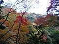 1 Minookōen, Minoo-shi, Ōsaka-fu 562-0002, Japan - panoramio (30).jpg