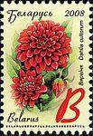 2008. Stamp of Belarus 11-2008-06-10-georgina.jpg