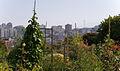 2008 community garden FtMason SanFrancisco 2703482276.jpg