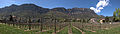 2011-04-07 14-15-40 Italy Trentino-Alto Adige Caldaro sulla strada del vino - Kaltern an der Weinstrasse.jpg