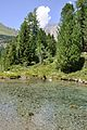 2013-08-06 12-31-12 Switzerland Kanton Graubünden Poschiavo Val di Campo.JPG