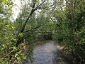 2014-05-15 13 06 02 View down the Assunpink Creek from Raoul Wallenberg Avenue in Trenton, New Jersey.JPG