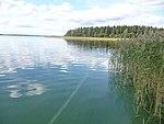 2014-08-18 Turku 01.jpg