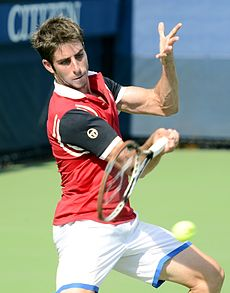 2014 US Open (Tennis) - Qualifying Rounds - Enrique Lopez-Perez (14879249869).jpg