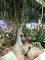 2015-05-27 Paris, Jardin des plantes 51.jpg