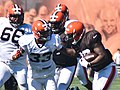 2015 Cleveland Browns Training Camp (20246535425).jpg