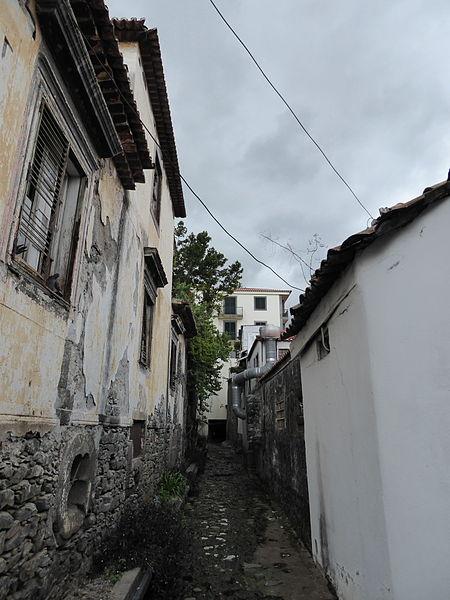 File:2015 Madeira Pana (139).JPG