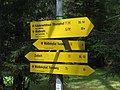 2017-07-15 Urlaub Virgental und Zell am See (154).jpg