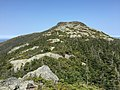 2017-09-11 13 12 15 View north along the Long Trail between the Nose and the Chin of Mount Mansfield within Mount Mansfield State Forest in Underhill, Chittenden County, Vermont.jpg