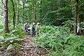 2019-08-17 Hike Hardter Wald. Reader-27.jpg