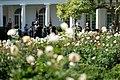 2020 Fall Garden Tours (50506264042).jpg